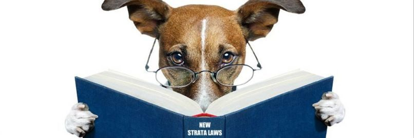 Pet Bylaws in NSW Strata